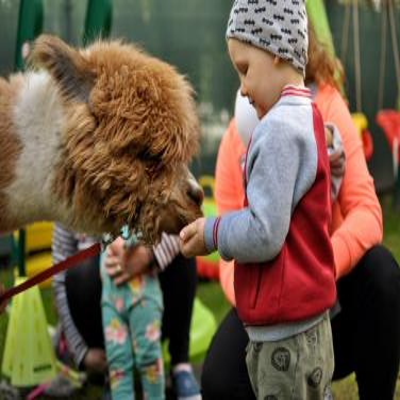 dzieci poznają zwierzęta 17