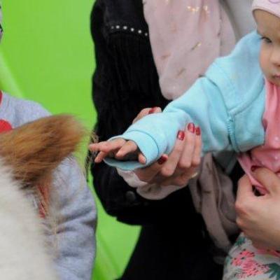 dzieci poznają zwierzęta 6