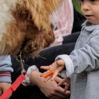 dzieci poznają zwierzęta 7