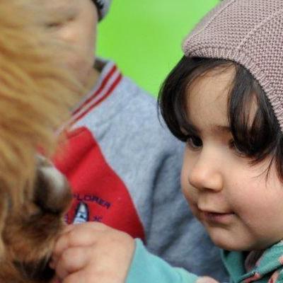 dzieci poznają zwierzęta 9